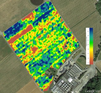 Satellite overlay showing berry count over a 30 acre field